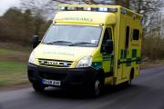 There is a cat in the road; I think it's dead': Ambulance service reveal time-waster calls