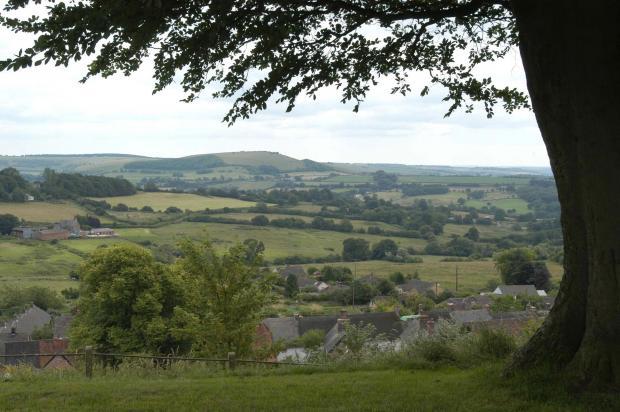 View Of Hills In Dorset