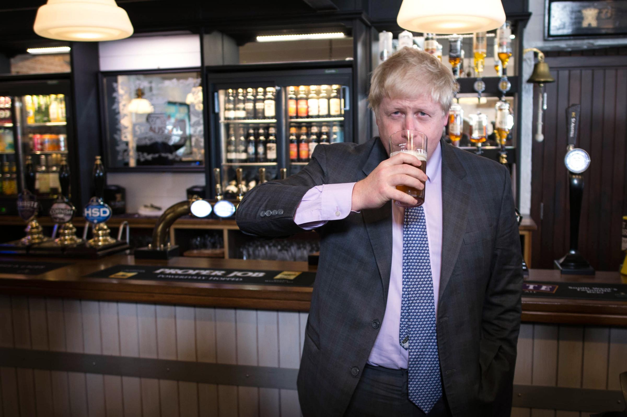 Resultado de imagen de brexit loonies in government