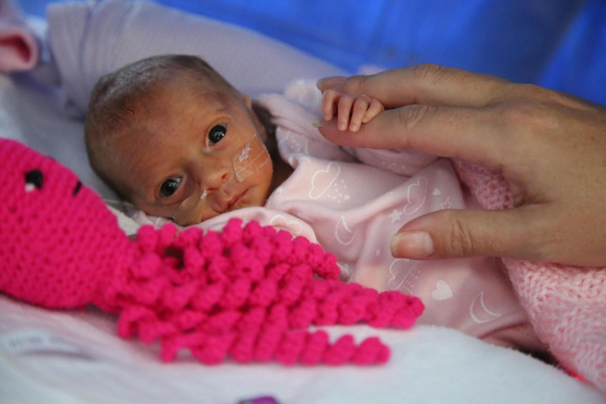 Campaign To Crochet Cuddly Octopus Toys For Premature Babies At