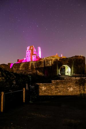 Dorset Echo: Corfe Castle was lit up in purple at the weekend for a very special reason. Click to see more pictures.