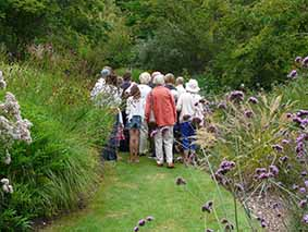 Guided Walk – Local Landscapes: Knoll Gardens and Ferndown Common