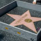 Dorset Echo: Man who smashed Donald Trump's star on Hollywood Walk of Fame avoids jail