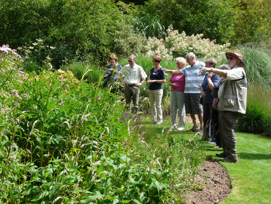 Guided Walk, Beautiful Butterflies with Keith Powrie