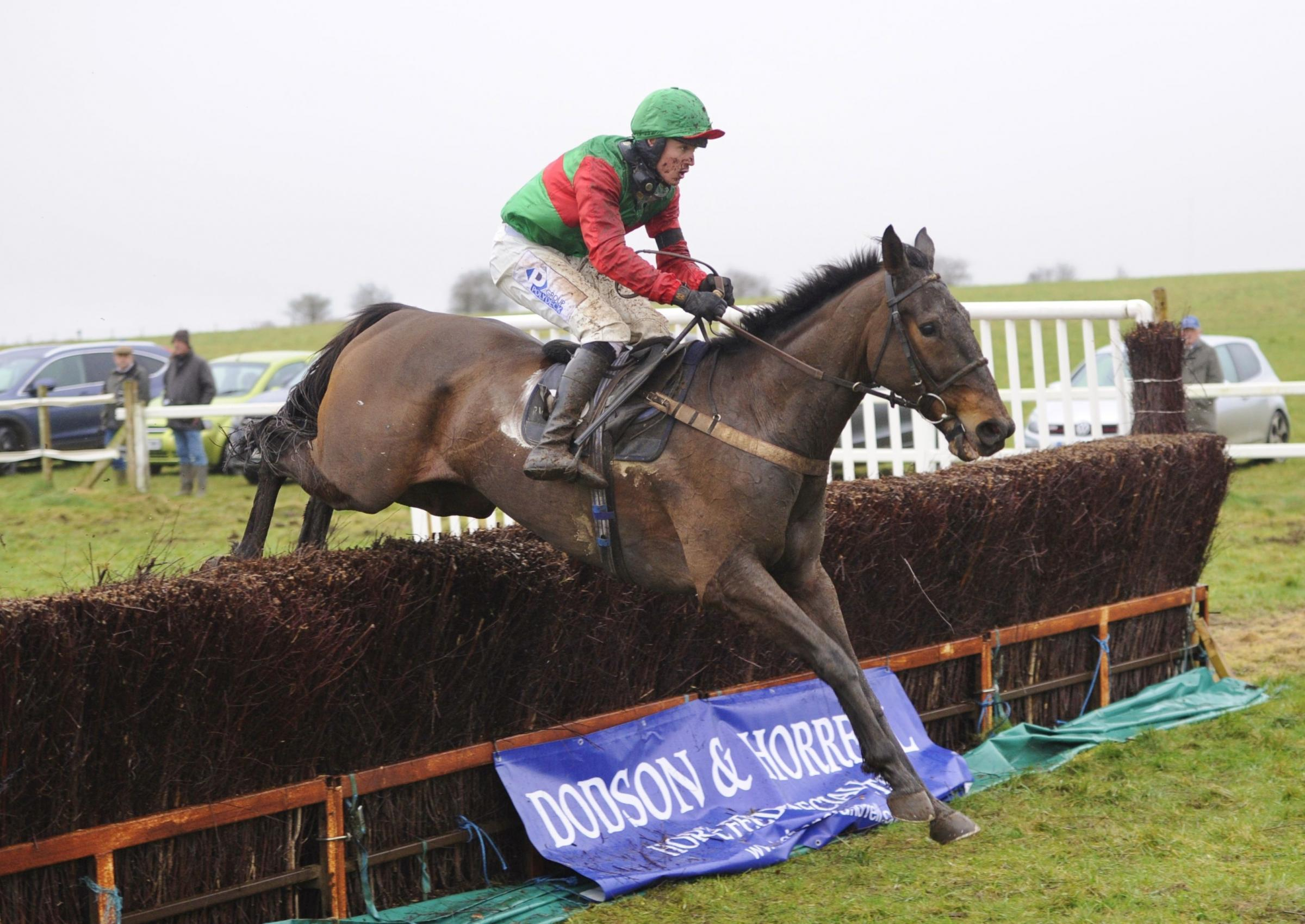 EASY WINNER: Thereyarsee, ridden by Lorcan WilliamsPicture: TIM HOLT
