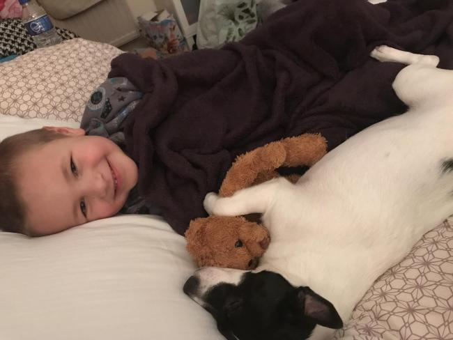 My son and our dog Billy having a snuggle with their favourite teddy