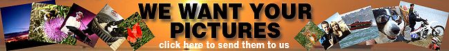 We Want Your Pictures Banner