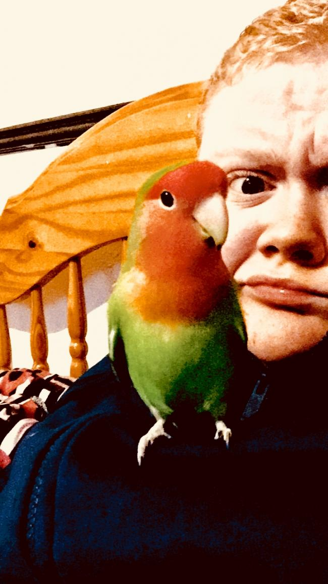 Selfie with my pet bird peachy the lovebird