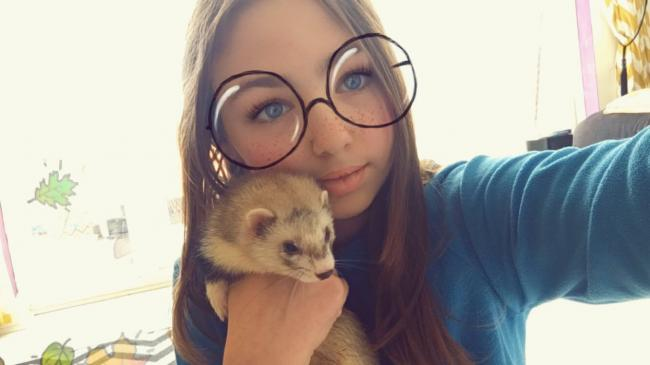 Penny (the ferret) enjoying snuggles with her owner.