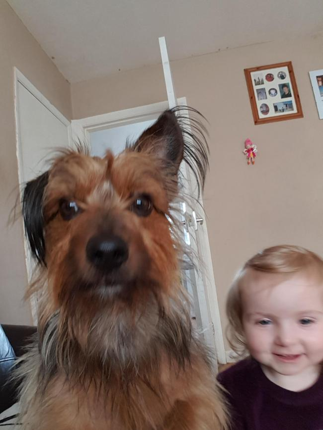 Charlie the dog and Ivy posing for a cheeky selfie