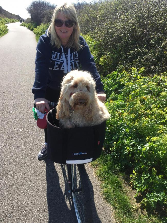Teddy enjoying his bike ride with mummy