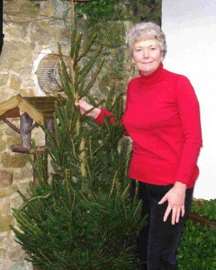 Sue Farrant with a Christmas tree