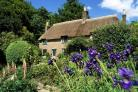 SUMMER FUN: Hardy's Cottage at Higher Bockhampton     Picture: NATIONAL TRUST/DAVID SELLMAN.