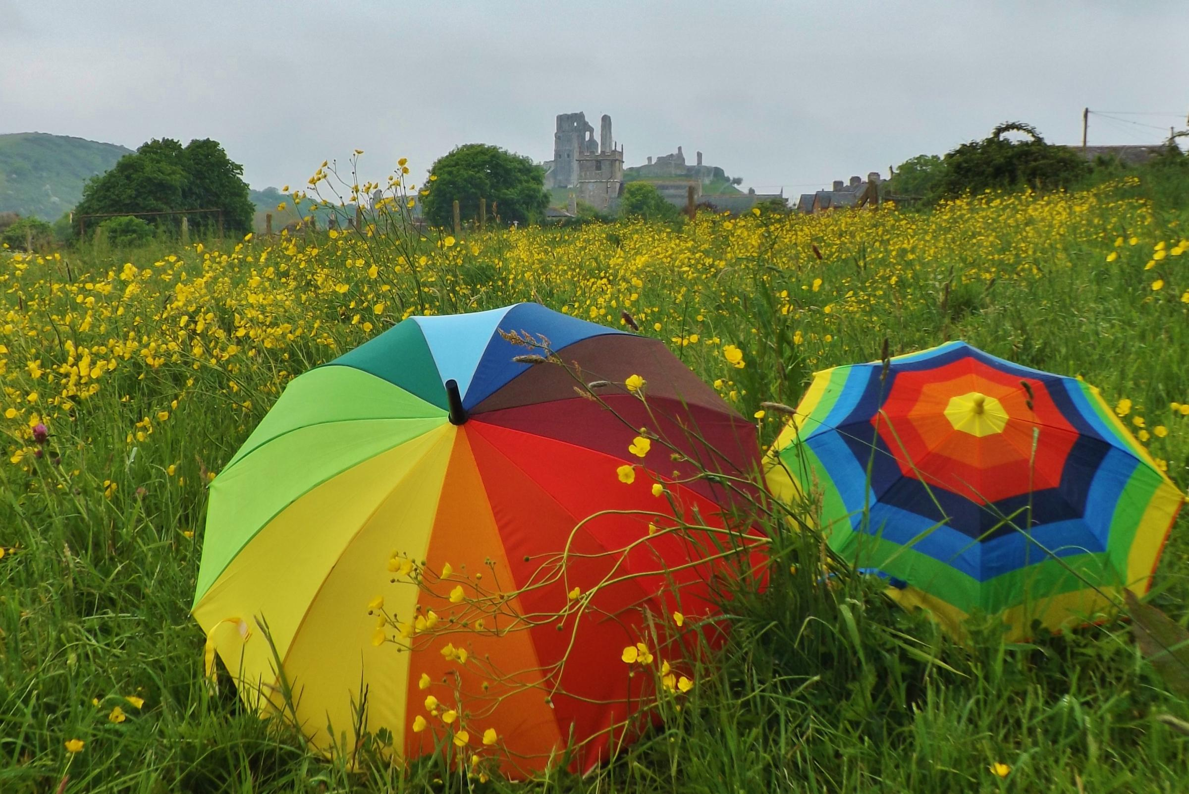 CHANGEABLE: Brollies out at Corfe Castle, pictured by Robin Boultwood