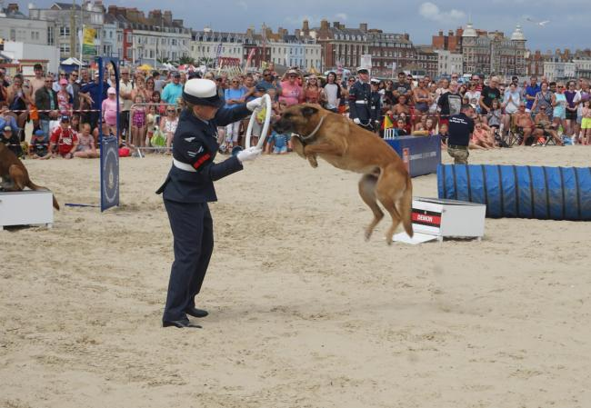 RAF Police Dog Display Team at Weymouth Beach. Picture: Sam Beamish