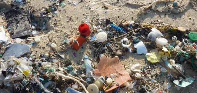 DAMAGE: Plastic in our oceans
