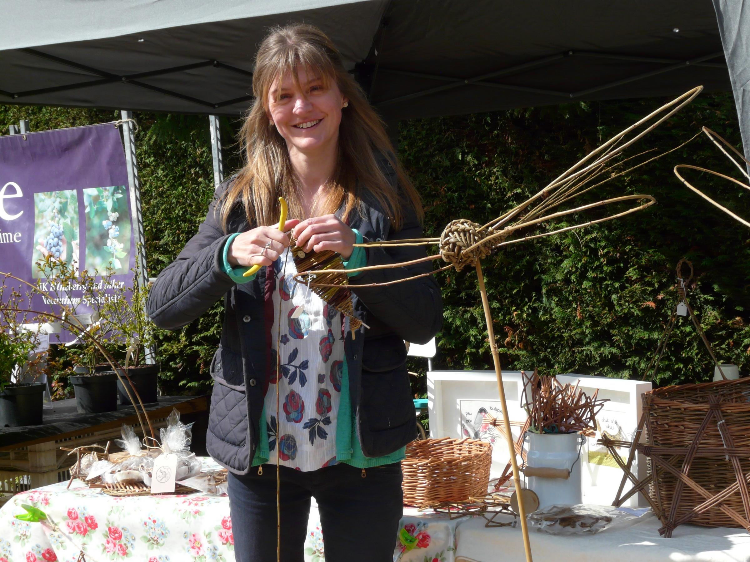 Workshop: Create a Willow Dragonfly with Tracy Standish