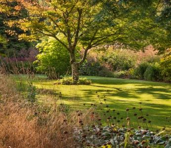 Workshop: Art in the Garden with Nikki Sheppard