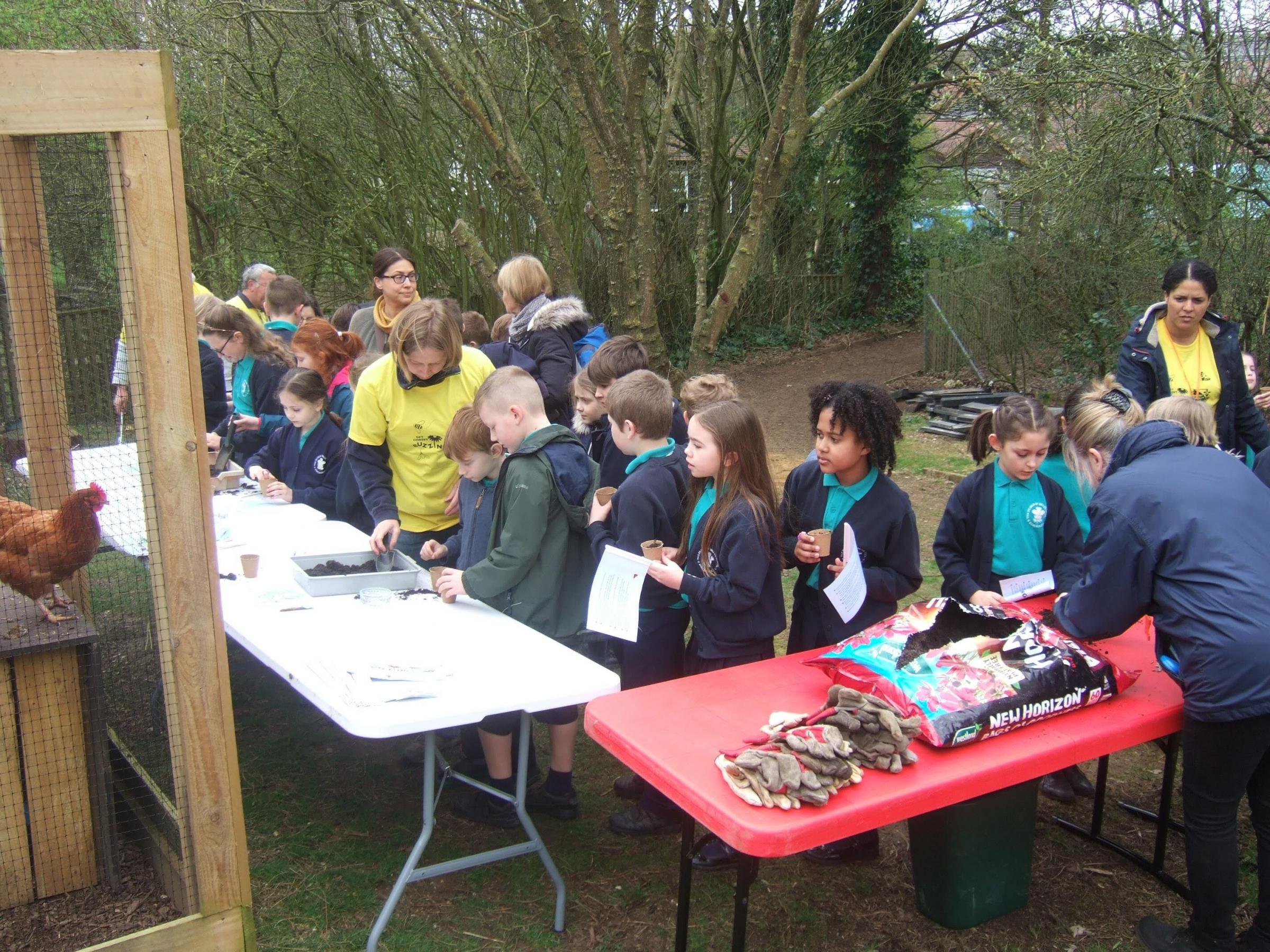 Dorset Wildlife Trust's Get Dorset Buzzing campaign gets 1,500 people to sign up