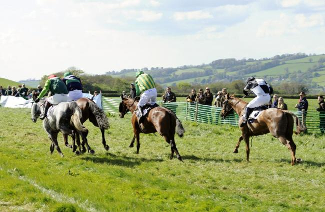 FINE EVENT: Littlewindsor hosted the Seavington point-to-point                                                                Picture: TIM HOLT