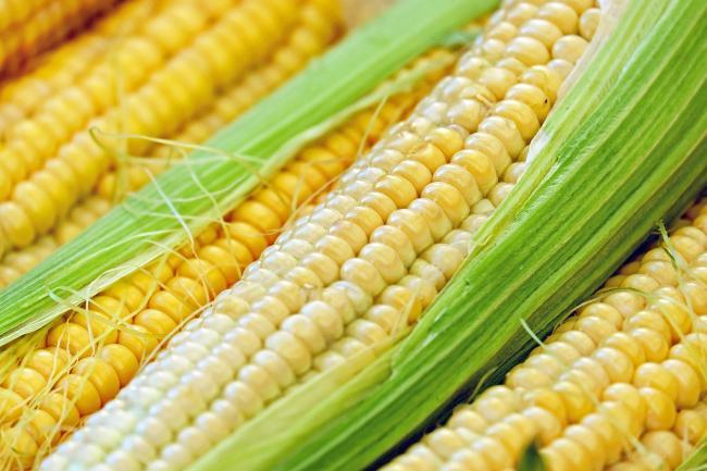 How to barbecue corn on the cob - this is the best method